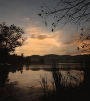 Bever Lake weeds #3 by Joe Gemignani