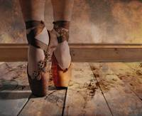 Steampunk Rusted Mechanical Pointe Shoes