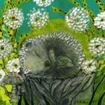 Fast Asleep by Jennifer Lommers