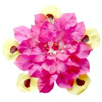 Mandala Blessing of  the Bougainvillea, Lime, Hibi