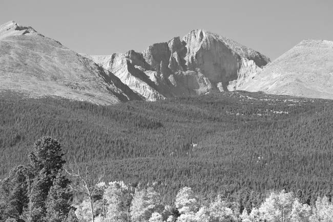 Autumn View of  Rocky Mountains Longs Peak BW