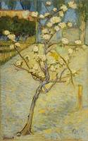 Van Gogh,Small pear tree in blossom
