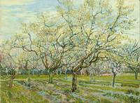Van Gogh,  The white orchard