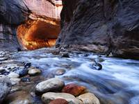 Zion Narrows - Horizontal