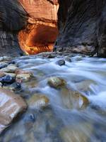 Zion Narrows - Vertical