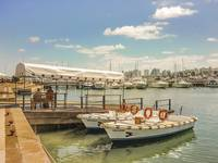 Sunny Morning at the Port of Punta del Este