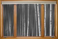Surreal Forest Night Classic Wood Window View