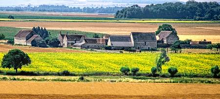 Loire Valley Farm