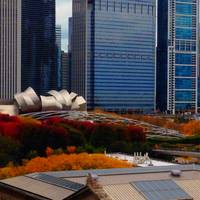 Millennium Park in the Fall