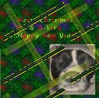 Merry Christmas Rio & Message - Copy