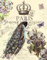 paris crown blue peacock lt