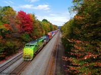 Fall Trains