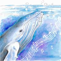 Blue Whale Song