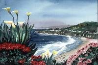 Cliffs of Laguna Beach