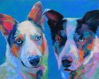 Bailey n Milka, two aussi, cattle dog mixes