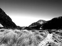 moor grass and mountains b&w
