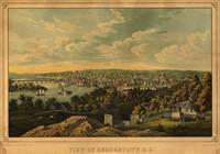 View of Georgetown, Washington D.C. (1855)
