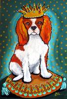 King Charles Spaniel on Turquoise