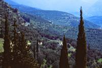 Delphi, Springtime 2003 by Priscilla Turner