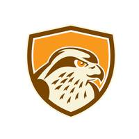 Peregrine Falcon Head Shield Retro