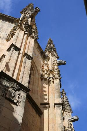 Gargoyles of Segovia