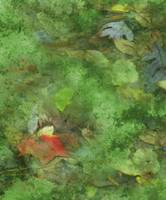 Autumn Leaves abstraction-2