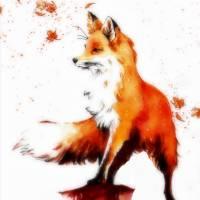 """Beautiful Autumn Fox"" by regalmind"