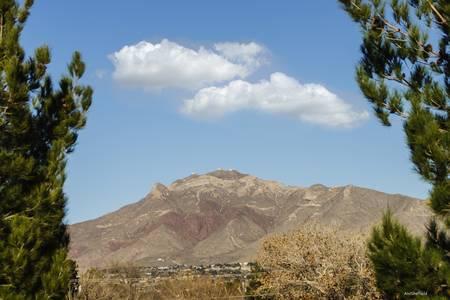 Thunderbird on Mount Franklin