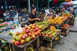 Market at Iquitos, Peru by Allen Sheffield