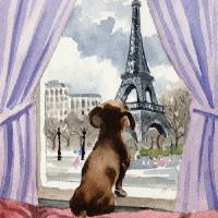 """Dachshund in Paris"" by k9artgallery"