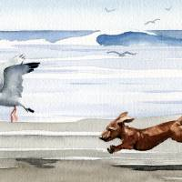 """Dachshund at the Beach chasing seagull"" by k9artgallery"