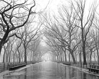 Poets Walk Central Park NYC