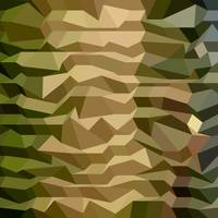 Camouflage Abstract Low Polygon Background
