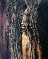 Graceful Gaze By Janet Ferraro Fine Art