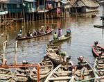 Busy Canoes by Allen Sheffield