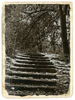 snow covered steps in sepia