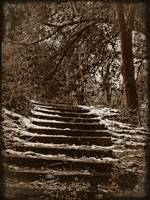 snowy steps in sepia