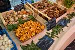 Fungi at Nice Market by Allen Sheffield