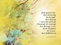 Serenity Prayer Manzanita Golden