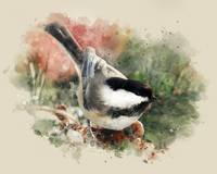 Chickadee Watercolor Painting