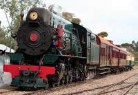 Pichi Richi Railway Steam Train Engine Locomotive