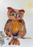 Burnished Brio Woot Owl