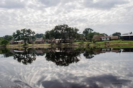 Amazon Reflections 2