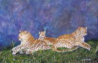 tres leopardos enhanced
