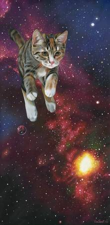 SpaceKitty