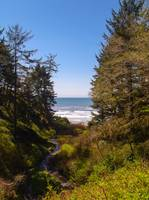 Olympic Coast from Ruby Beach