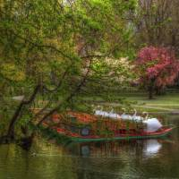 """Swan Boats in Boston Public Garden"" by BostonArt"
