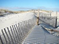 Fence Shadows on Sand Dunes04