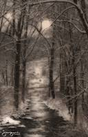 A Snowy Day at the Creek #2 by Joe Gemignani