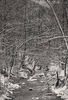 A Snowy Day at the Creek by Joe Gemignani